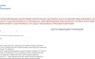 Регистрация и вход в личный кабинет РСА